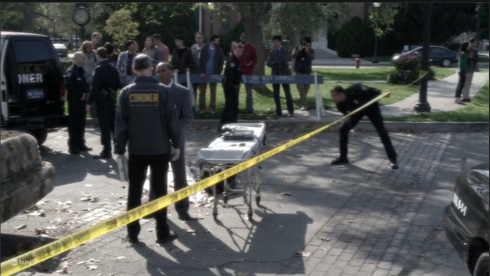 6 crime scene